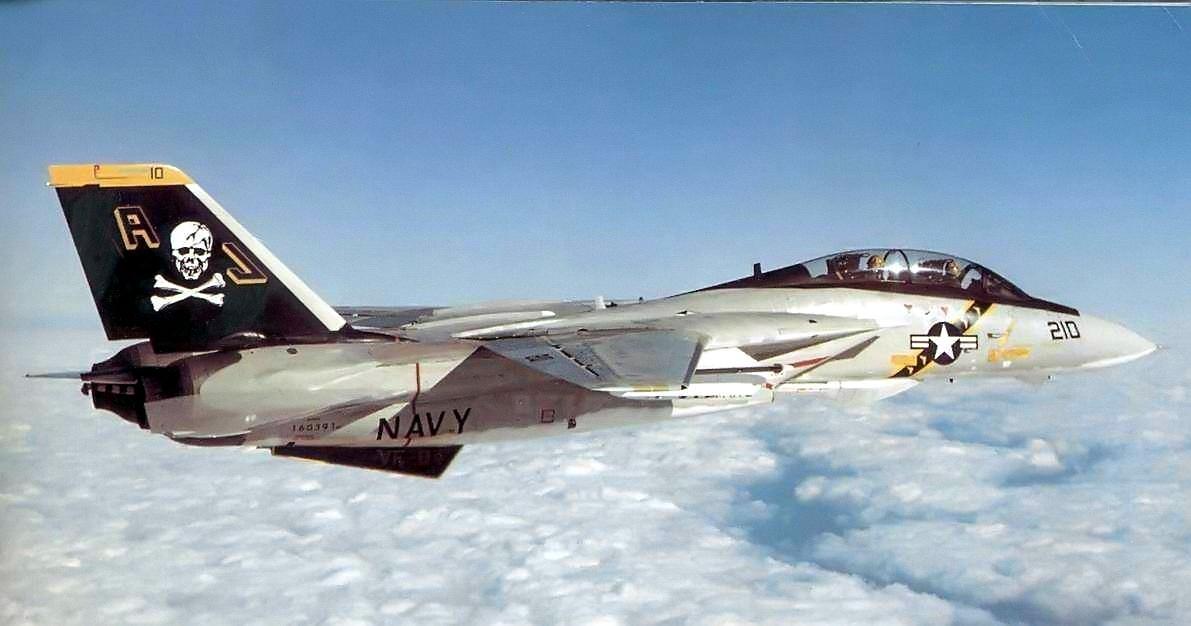 F 14 (戦闘機)の画像 p1_25