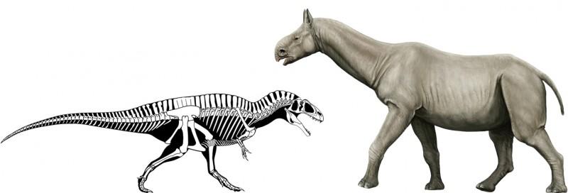 パラケラテリウムvsアクロカントサウルス